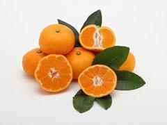 肌に良いとされるビタミンCが豊富な柑橘類がシミの原因に? 知っておきたい光毒性の話