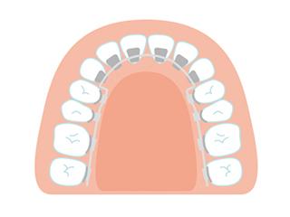 歯並びで顔は変わる! 今から始める大人の矯正歯科